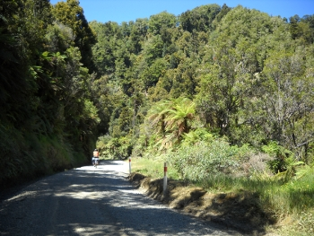 guy on the taurange gorge road