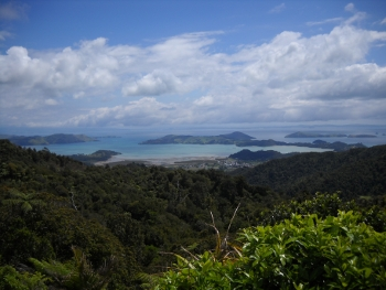 view over coromandel town from the big col